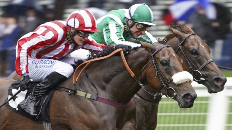 Battle to the finish: Intense Romance heads Mr Lupton to land the Listed Duke Of Edinburgh's Award Rous Stakes at Ascot