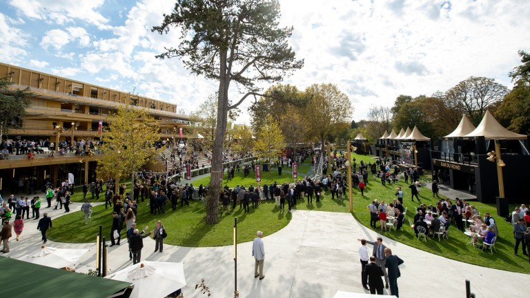 Room with a view: the paddock at Longchamp