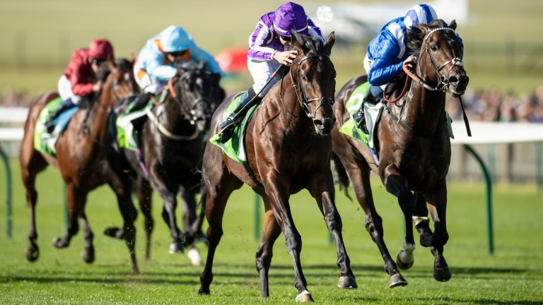 Ten Sovereigns (purple) lands the Middle Park Stakes