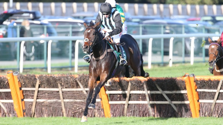 Bags Groove: can get off the mark over fences at Stratford