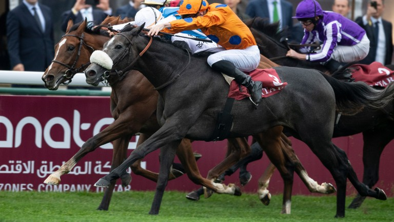 Lily's Candle (noseband) edges out Matematica (far side) to snatch Group 1 glory