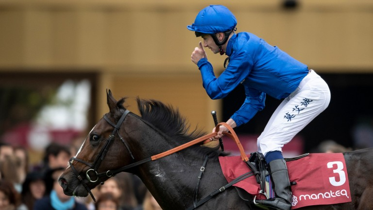Royal Marine: ready for the Craven Stakes