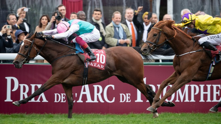 After her victory in the Arc, will Enable go to the Breeders' Cup Turf