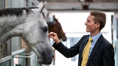 Harry Cobden, first jockey to Paul Nicholls, gets to know the yard's star chaser Politologue