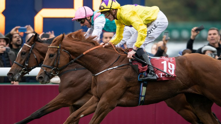 Sea Of Class fails to close the gap on Enable in the Arc earlier this month