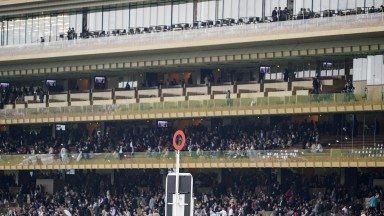 The view from the new Longchamp stand met with general approval but many racegoers contacted the Racing Post to complain of excessive queuing for food and drink