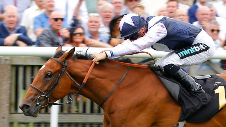 Antonia De Vega: returned with a striking win in a Listed event at Newbury