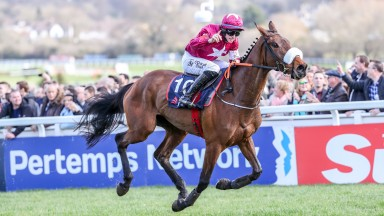 Shattered Love: could have a nice weight in the Boylesports Irish Grand National, according to Elliott