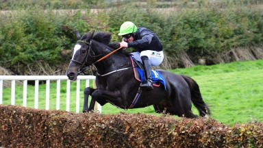 Castletown-Geoghegan PTP 7-10-18 PENNYFORAPOUND & Barry O'Neill jump the last to win the Goffs 4Yo Maiden Race.(Photo Healy Racing)