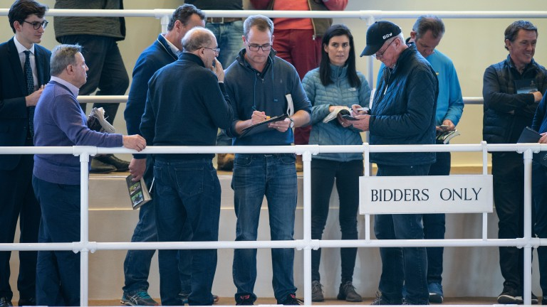 MV Magnier (glasses, centre) signs for the 3,400,000gns session topper