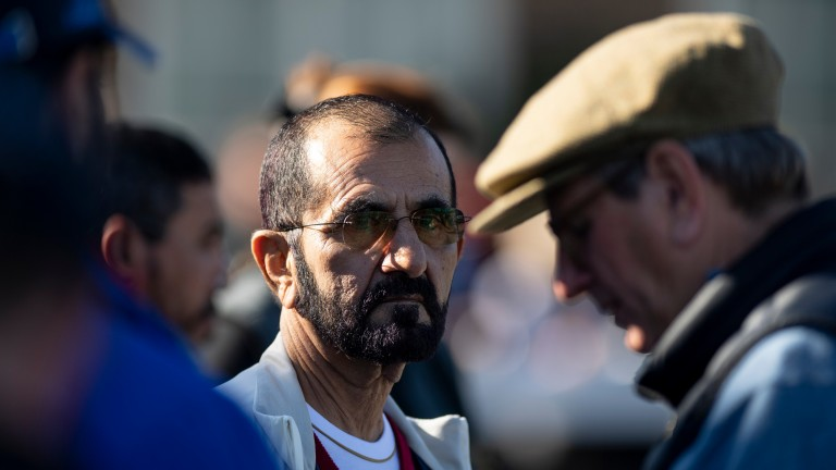 Sheikh Mohammed at Tattersalls on Tuesday