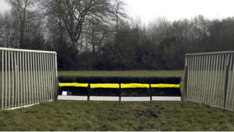 The new proposed hurdles would be coloured fluorescent yellow and white