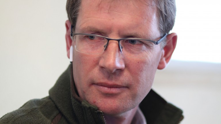 "David Redvers: ""These horses don't come up very often, but if he's as good as the full-brother he's a very cheap horse"""