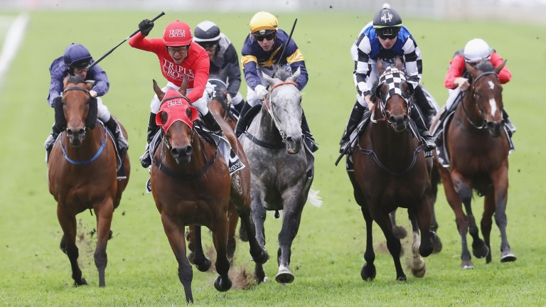 Redzel (second left) wins the inaugural running of The Everest last year
