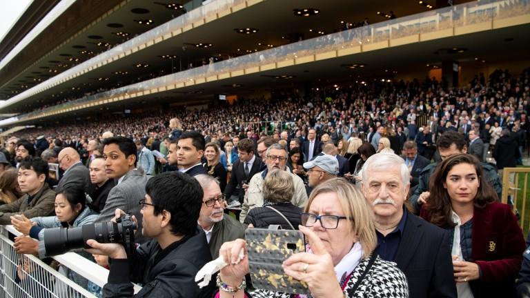 Pick your spot: the new Longchamp grandstand moments before the start of the Prix de l'Arc de Triomphe