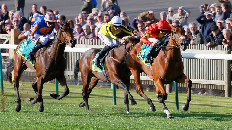 Iridessa (red) lands the Group 1 Fillies' Mile at Newmarket