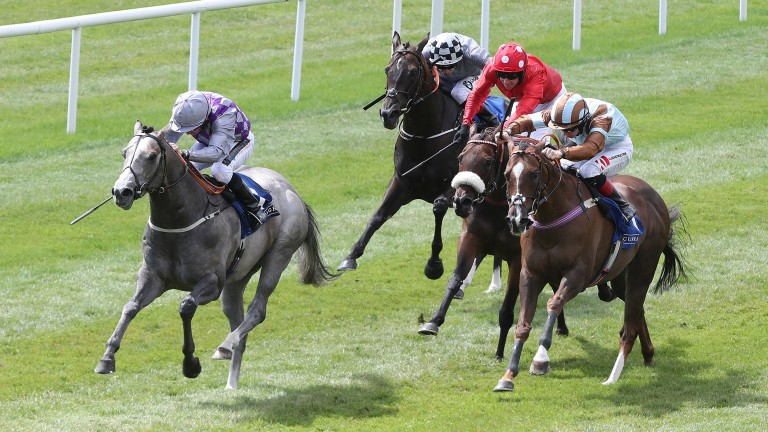 Havana Grey powers clear of Mabs Cross (red) and Caspian Prince (brown and blue) in the Group 2 Sapphire Stakes