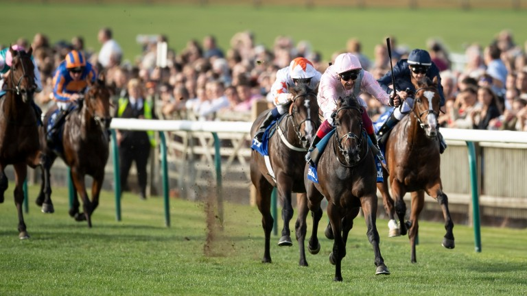 Too Darn Hot: up to second in Cartier standings