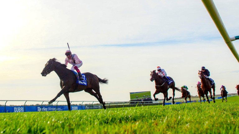 Too Darn Hot powers clear of Advertise and Anthony Van Dyck to win the Group 1 Darley Dewhurst Stakes
