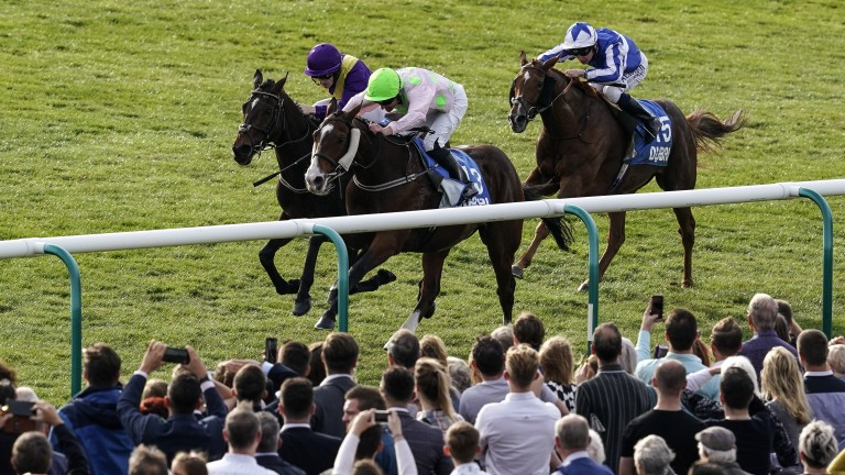 Low Sun (pink) just gets the better of stablemate Uradel in a thrilling finish to the Cesarewitch