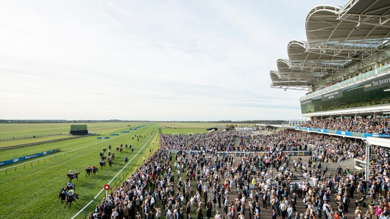 What a view: Low Sun downs Uradel in thrilling Cesarewitch