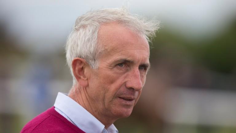 Martin Brassil: saddled a smart winner on the card