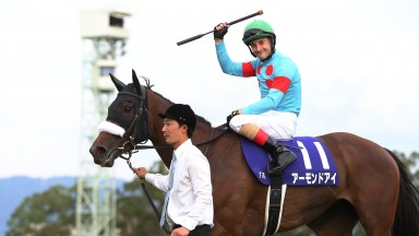 Christophe Lemaire salutes the crowd at Kyoto after Almond Eye completes the Japanese Fillies' Triple Crown in the Shuka Sho