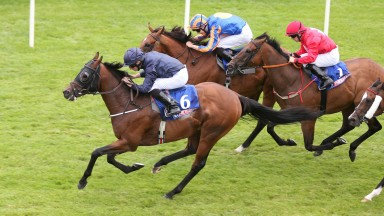 Curragh Sun 13 August 2017 Picture: Caroline Norris    Washington DC ridden by Ryan Moore winning The At The Races Phoenix Sprint Stakes from Cougar Mountain ridden by Donnacha O'Brien, 2nd, far side, and Gordon Lord Byron ridden by Wayne Lordan, 3rd.