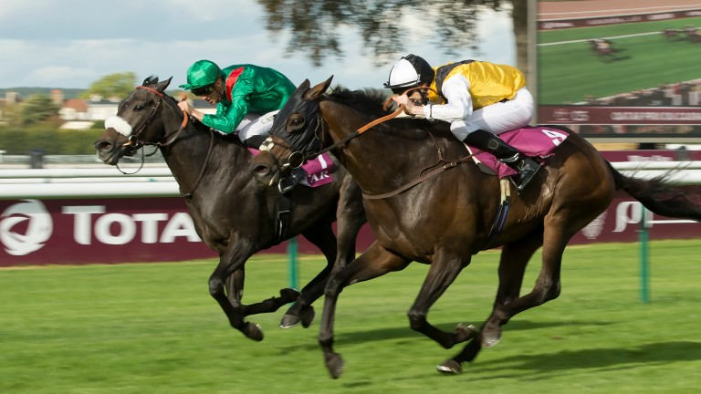 Getting the hang of it: George Baker crossed the Channel to land the Prix du Cadran on Quest For More (near side)