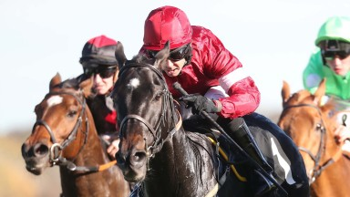 Pepys: has not been out of the prize money in ten starts this year