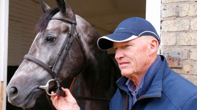 Looking to the autumn: John Gosden and Roaring Lion in relaxed mood as Qipco Champions Day approaches
