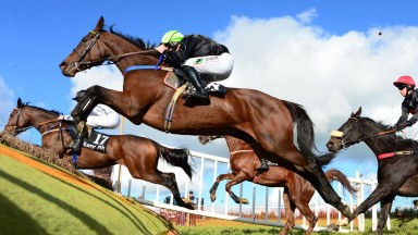 Monsieur D'Arque and Barry O'Neill win the 4yo maiden at Loughrea