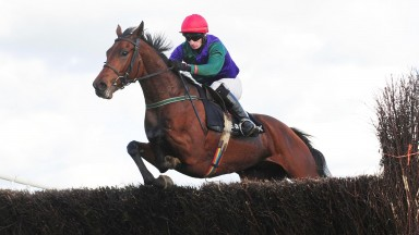 Loughrea PTP 14-10-18 DIFFERENT SPOT & Ray Barron jump the last to win the 5YO Geldings Maiden Race (Photo Healy Racing)