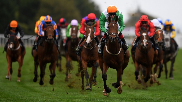 True Self (nearest) coasts clear of her rivals to win the Listed Beckford Stakes at Bath