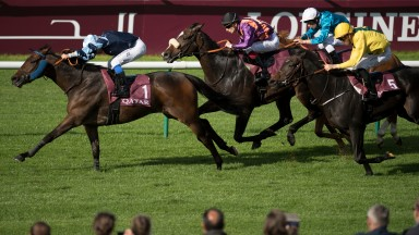 Subway Dancer (purple and orange jacket) chases home Garlingari in the 2017 Prix Dollar at Chantilly