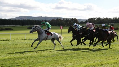 Teqany (seen here winning at Gowran) proved a very fortunate winner of the novice chase at Tramore