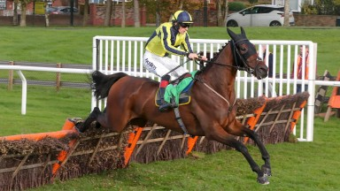 Good Boy Bobby: highly regarded novice hurdler formed part of a treble for Nigel and Sam Twiston-Davies