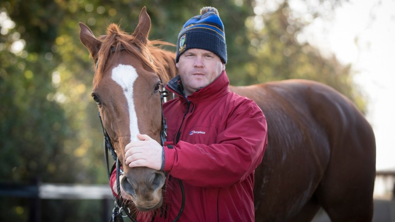 Gordon Elliott is set to unleash many of his star names at Down Royal on Friday and Saturday