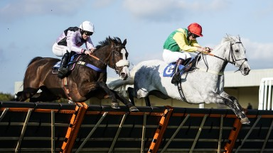 Equus Amadeus (left side) pings another hurdle under Robbie Dunne