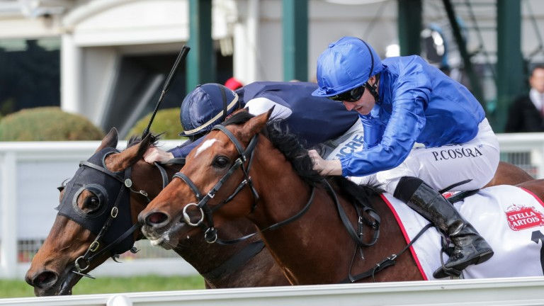 Best Solution (near side) narrowly wins the Caulfield Cup under Pat Cosgrave