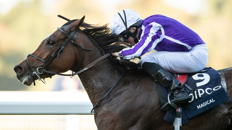 Magical (Ryan Moore) wins the Fillies and Mares stakesAscot 20.10.18 Pic: Edward Whitaker