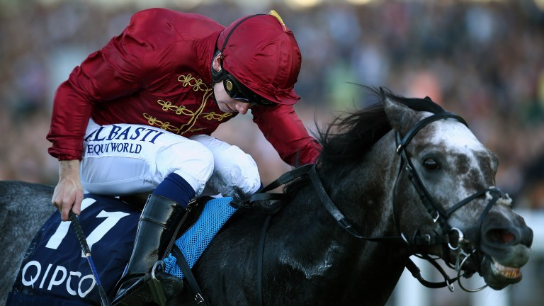 Roaring Lion: racing on dirt for the first time at the Breeders' Cup