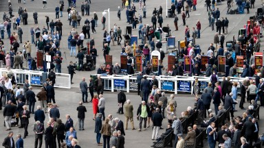 """The betting ring is still a vibrant place and people still have wagers in it"""