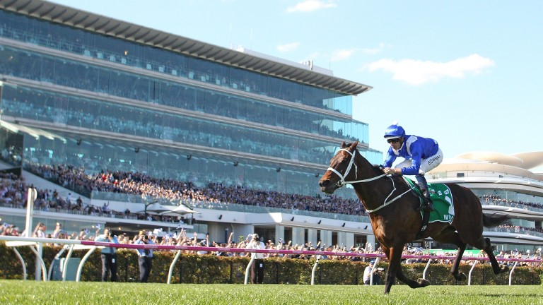 Winx: racing on for now but her broodmare career is looming large