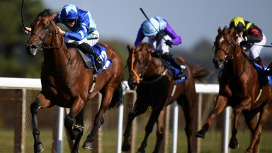 Stormwave winning in smooth style at Salisbury