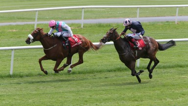Bona Fide (seen here winning in June) landed the feature fillies handicap at Gowran Park