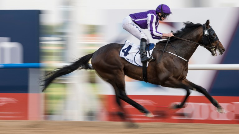 Mendelssohn will break from stall nine in his quest to give Aidan O'Brien a first Classic win