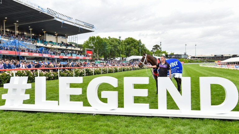 Winx: won four consecutive Cox Plates from 2015 to 2018