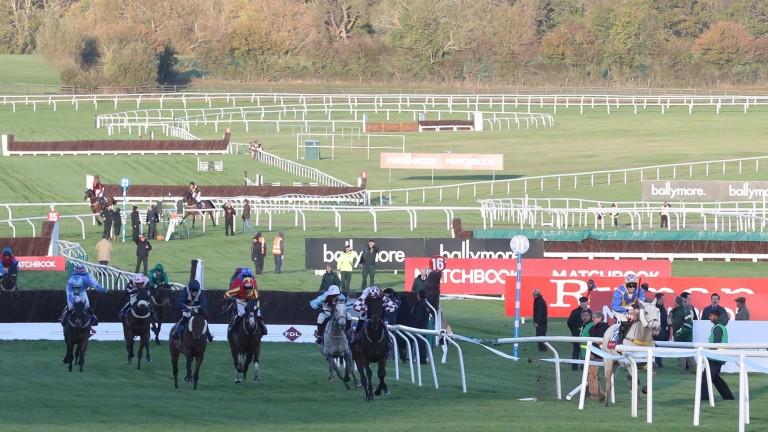 Oighear Dubh runs out at Cheltenham in October