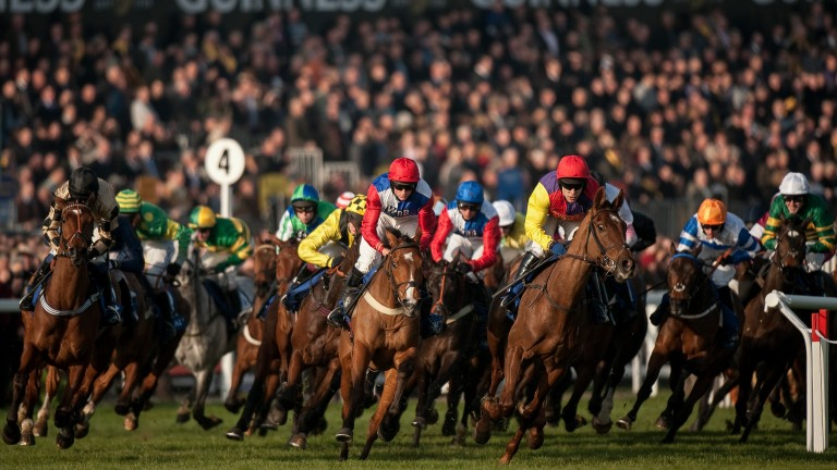 Cheltenham Festival: the new five-day meeting would feature six races per day from 2023